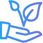 Spaandesign website bouwer Velp 1